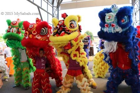 lions in green, red, yellow and blue colors