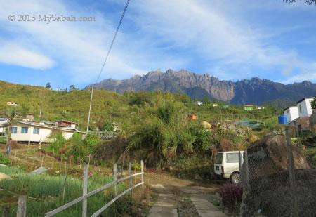 Mt. Kinabalu and Kg Mesilau village
