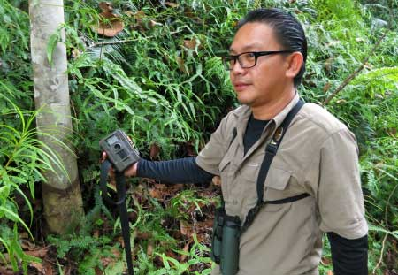 collecting camera trap