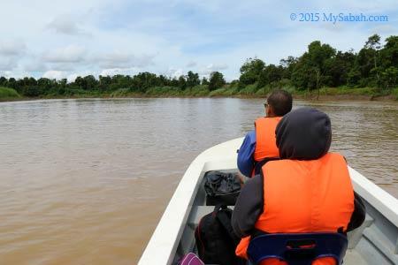river cruise on Kinabatangan River