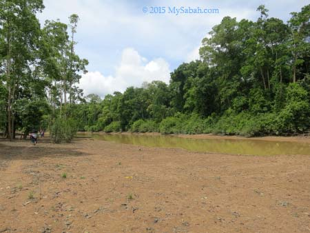 muddy river bank of oxbow lake