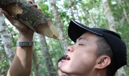 Top 10 Sabah adventures