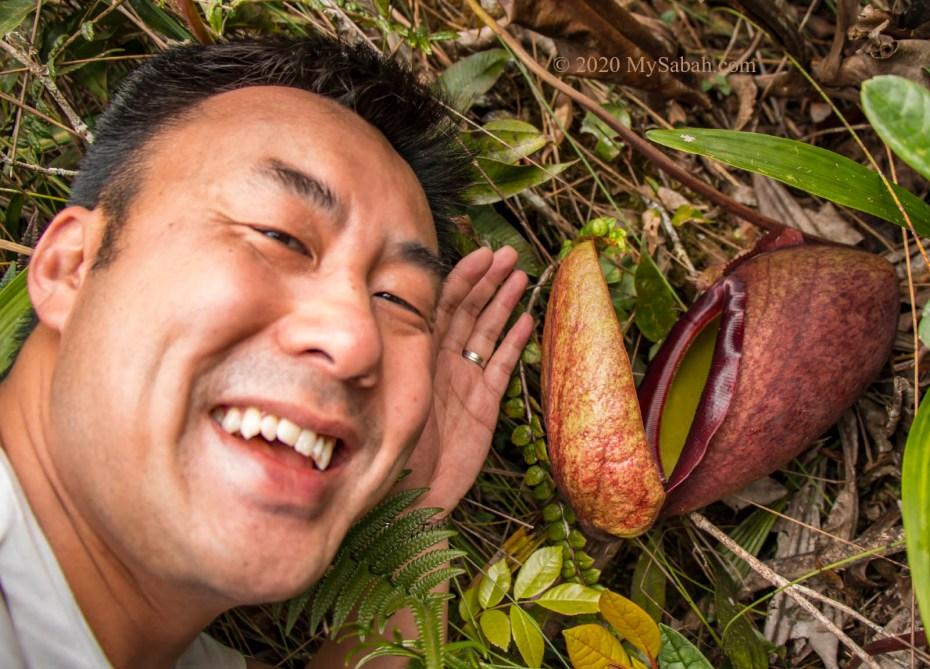 Nepenthes rajah next to tourist face