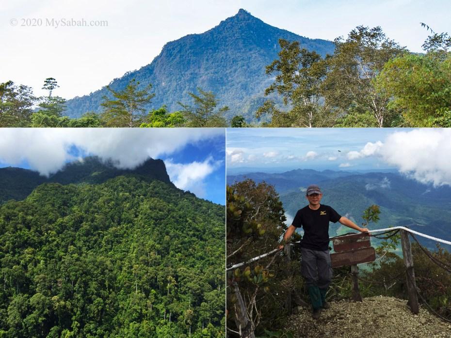 Mount Nombuyukong in Kinabalu Park