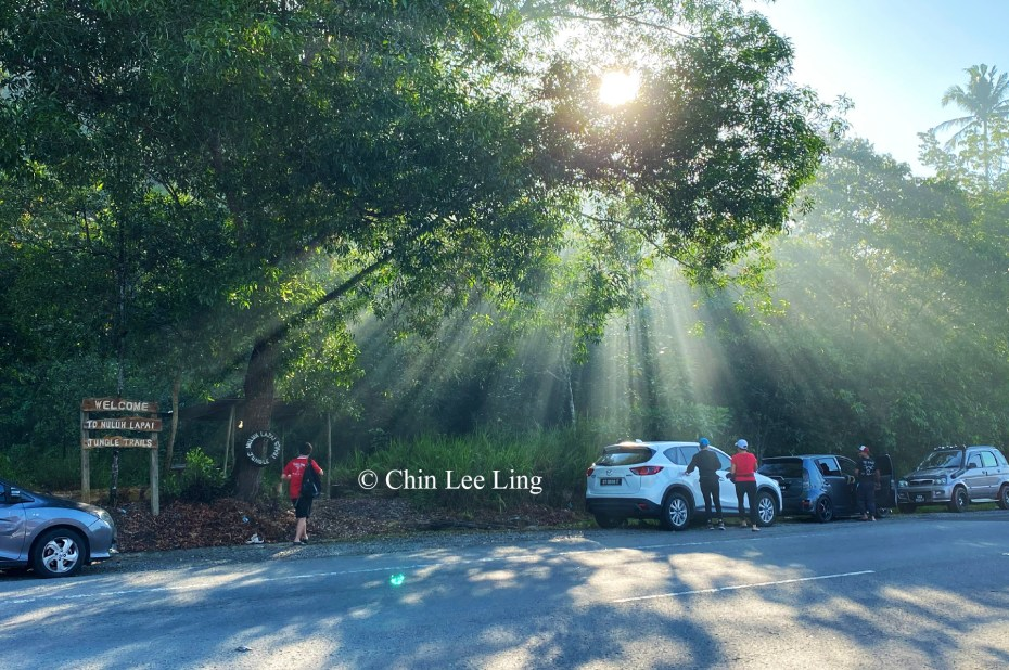 Morning light beams through the trees of Nuluh Lapai