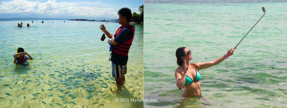 Tourists on the island
