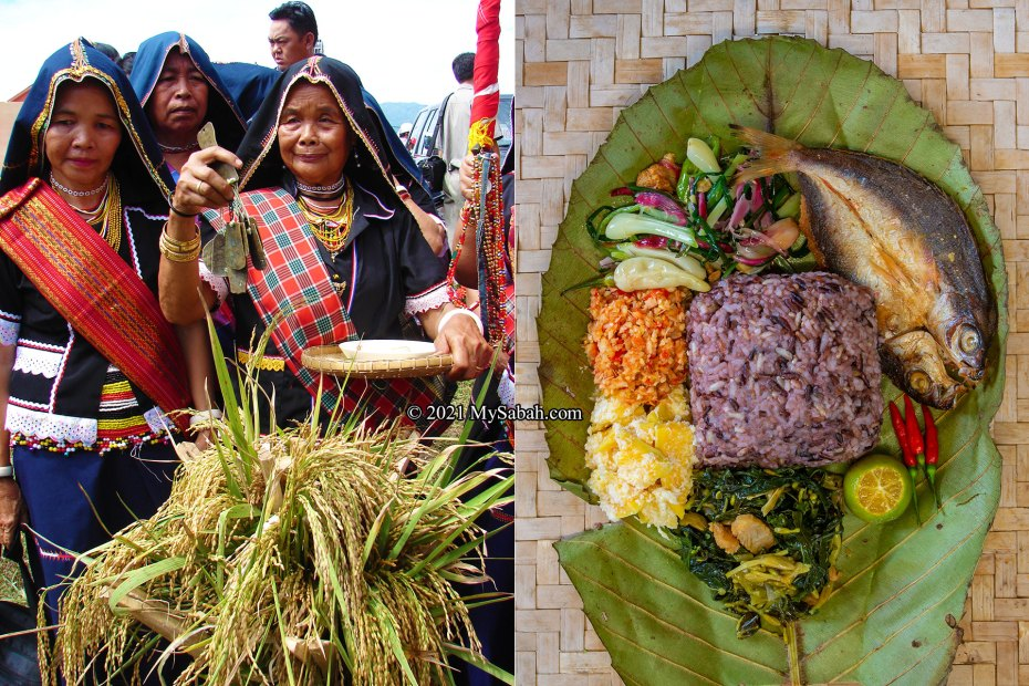Left: Bobolians (High Priest) of Kadazandusun appease the paddy spirits to pray for a bountiful harvest. Right: Linopot and its dishes
