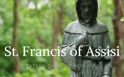 Emulating Saint Francis …