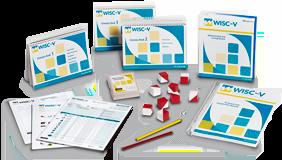 wiscv-kit