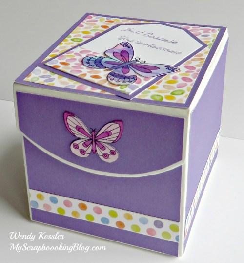 Butterfly Box by Wendy Kessler