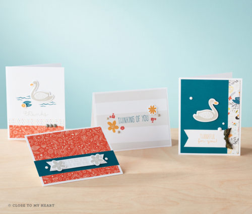 16-he-swan-lake-wyw-cards