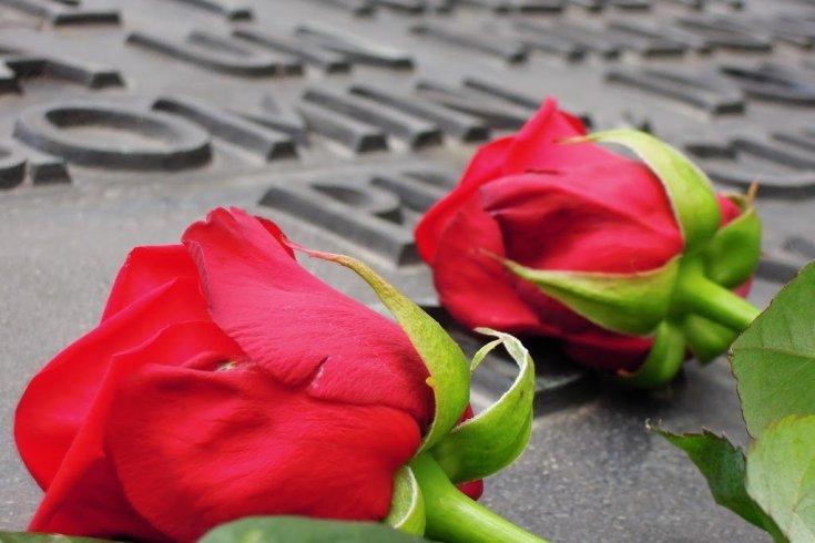 Rose per non dimenticare quello che è successo ad Auschwitz