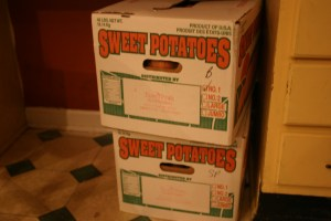 Boxes of Saura Pride sweet potatoes