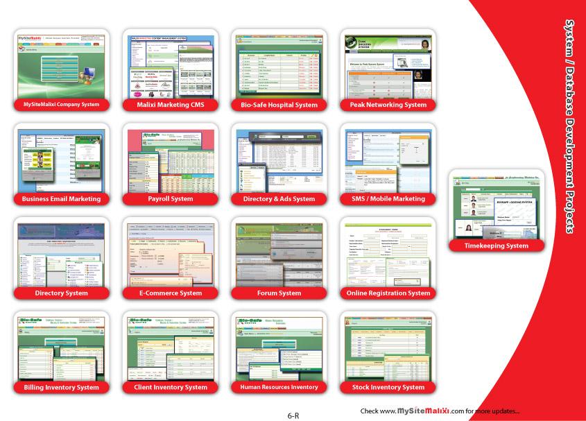 System / Database Development