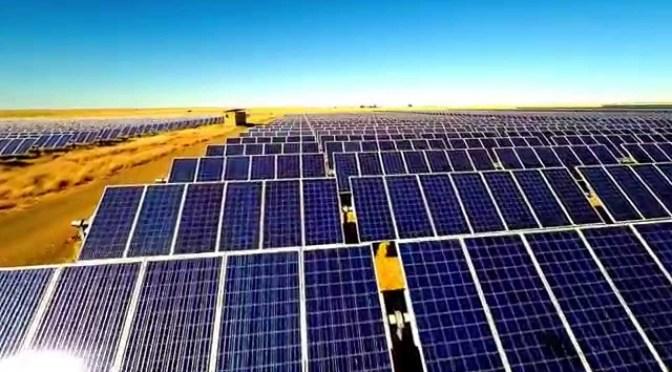 Kubota Perfect for Leading RSA Solar Power Farm