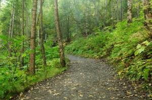 Pathways with Jesus