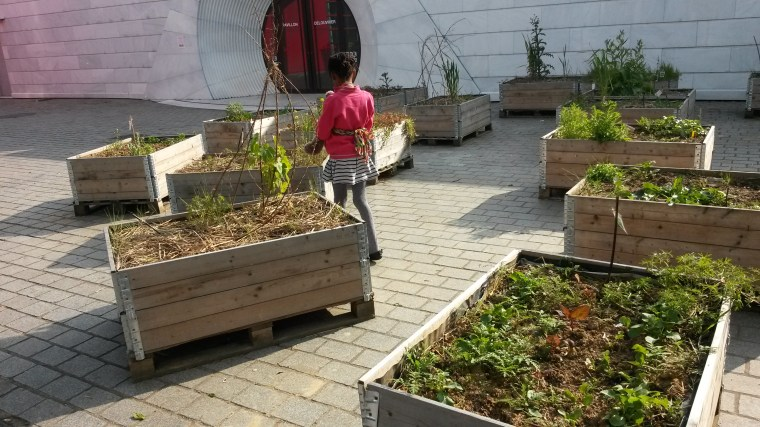 Community garden at parc de la villette