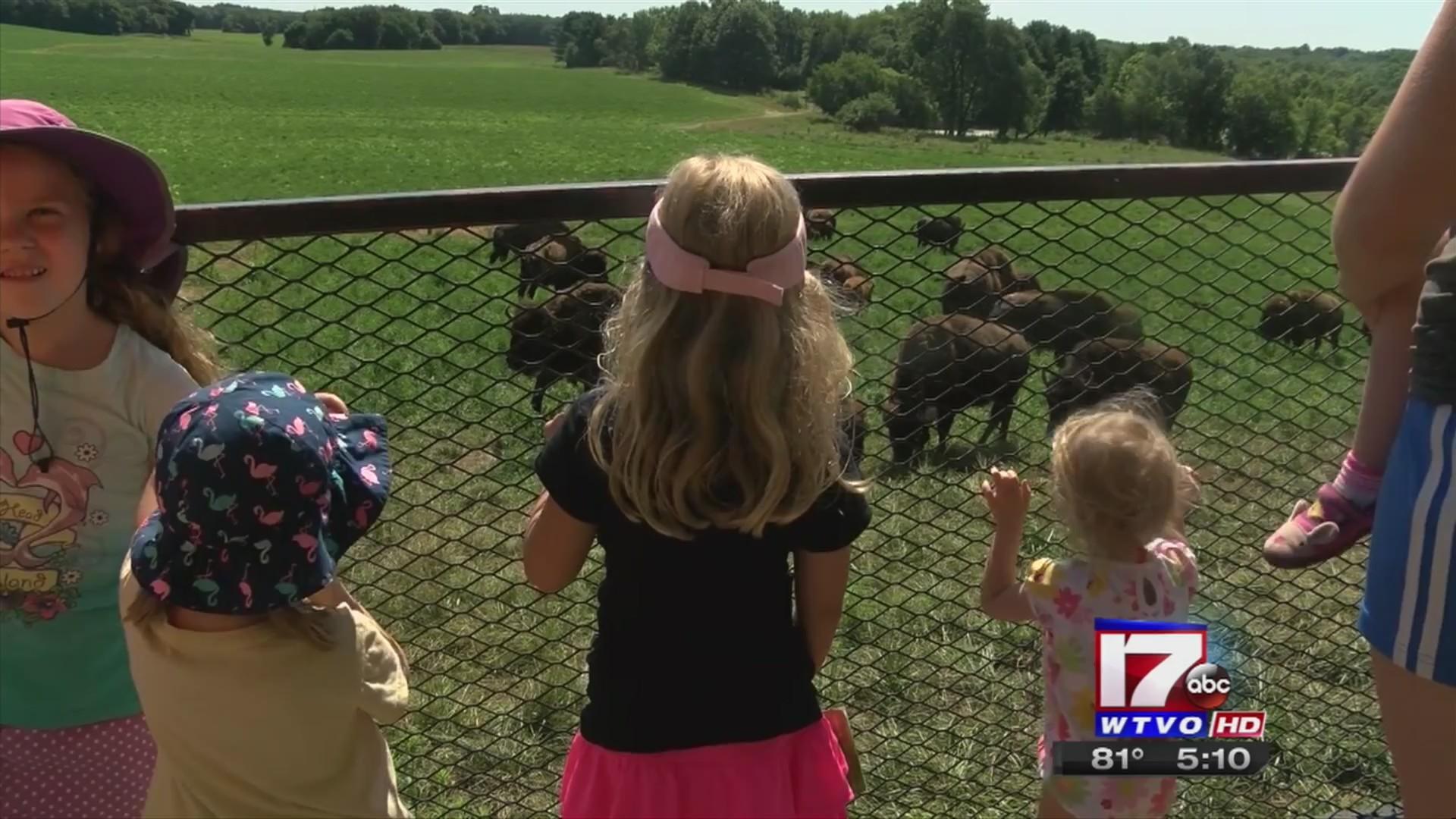 Destination Illinois: Peoria's Wildlife Prairie Park offers endless entertainment