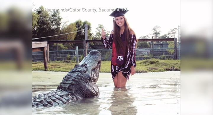 alligator grad_1533679269141.jpg.jpg