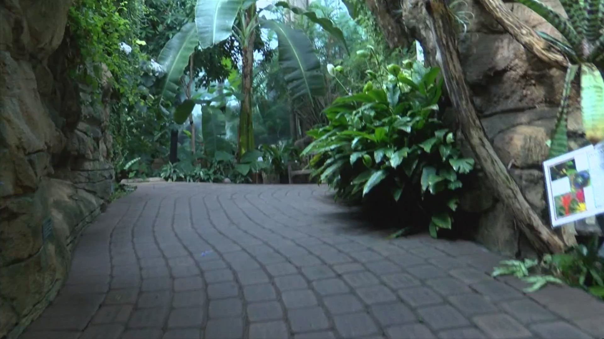 Destination Illinois: Rock Island's Botanical Center