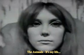 The Animals – It's My Life