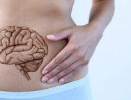 Έντερο – Είναι ο δεύτερος εγκέφαλος