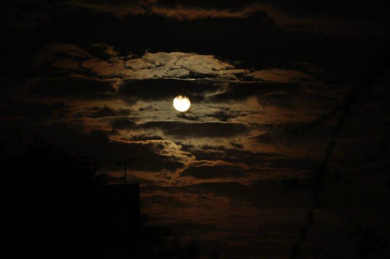 "Police Procedural Review: ""Under A Silent Moon"" By Elizabeth Haynes"