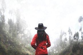 Review book suspense romance Dangerous Refuge By Elizabeth Lowell
