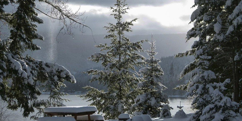 Christmas In Calgary Espionage Thriller Short Fiction By Dustin Lietha