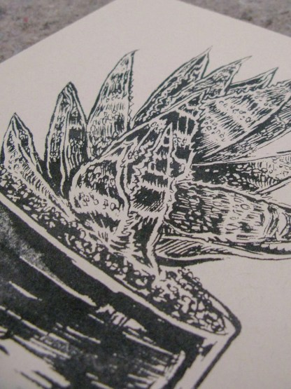 """Molcajete Plant"" risograph art print detail showing an illustration of a succulent in a salsa bowl"