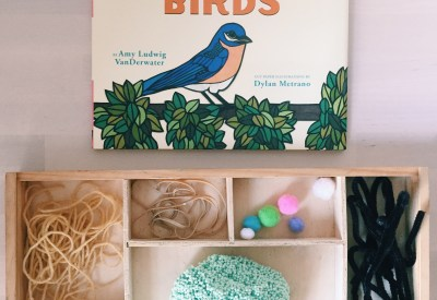 Birds Story Time and Loose Parts Nest Invitation