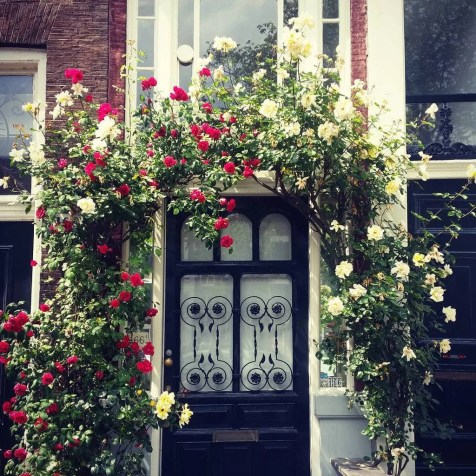 amsterdam door with roses