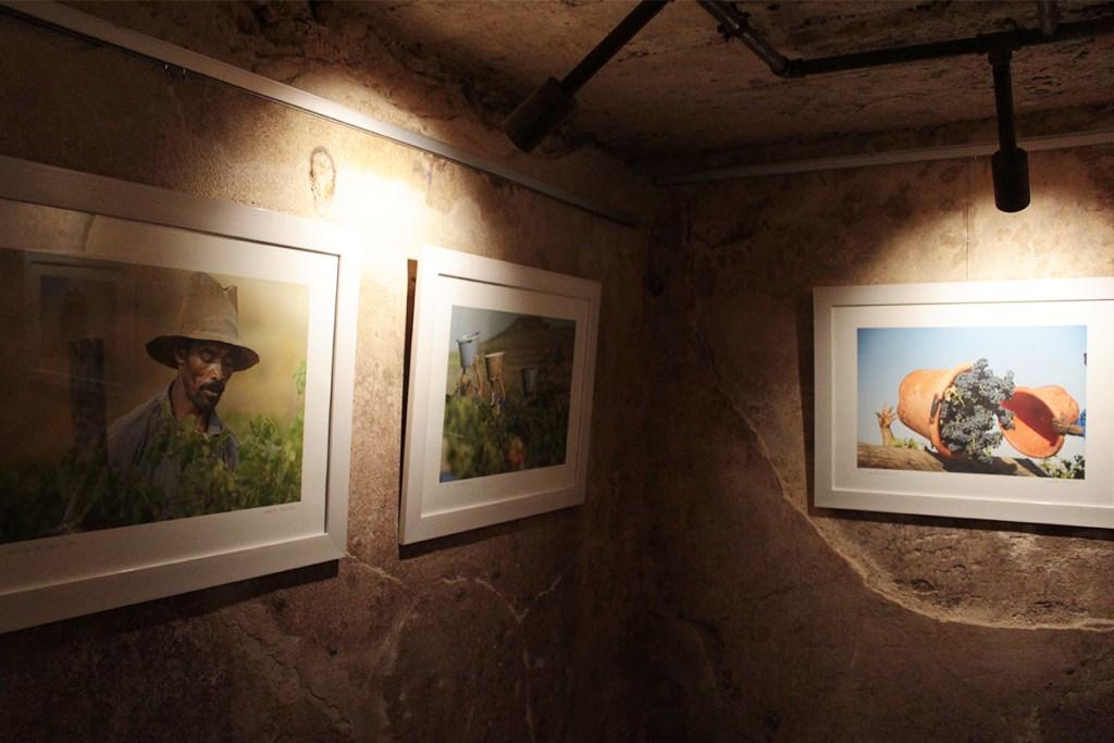 The cellar tour of Laresa Perlman's work at Zandvliet Wine Estate.