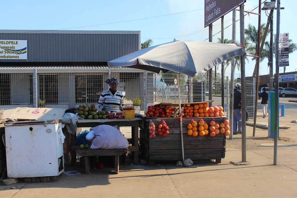 One of the many roadside vendors in Graskop.