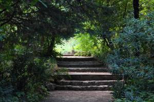 Le Jardin de la Reine de Montpellier