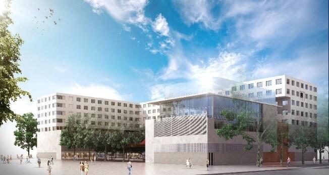 Artémisia Montpellier