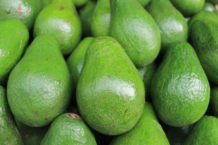 keto avocado mousse