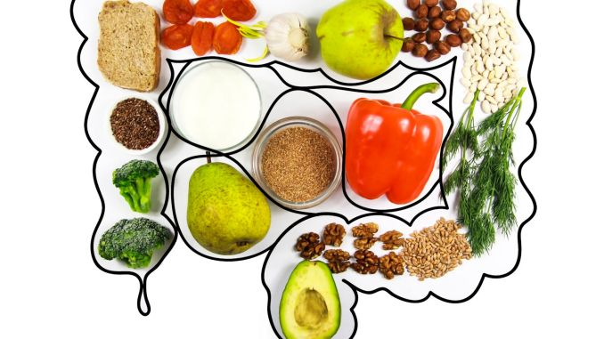 Brain Injury: What to Eat for a Healthy Gut – A Changing World
