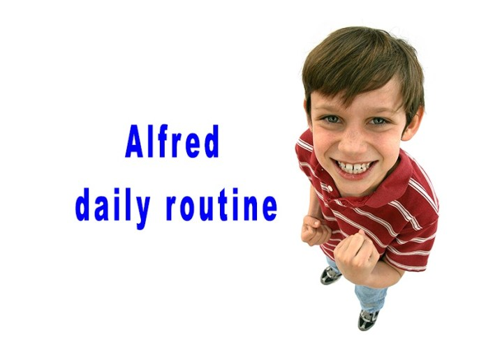 Comprehension Alfred daily routine