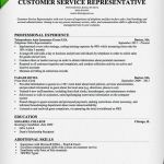 Customer Service Resume Template Of Free Resume Templates Download for Word