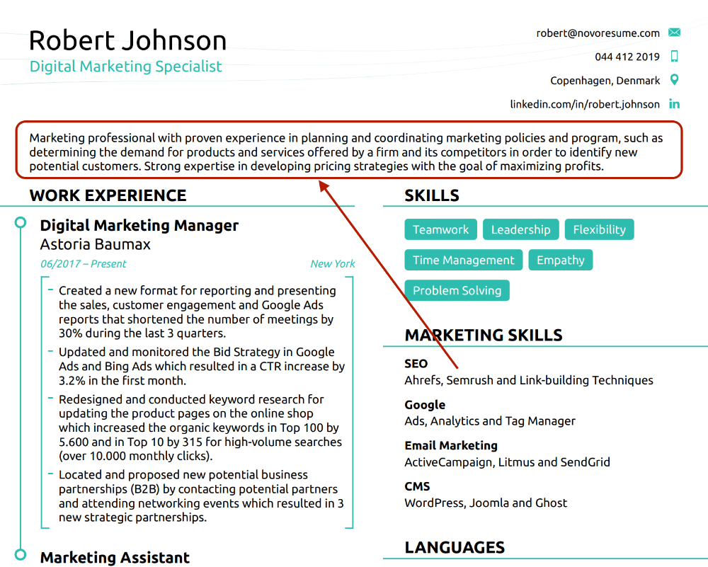 40 Resume Summary Examples [ How to Guide]