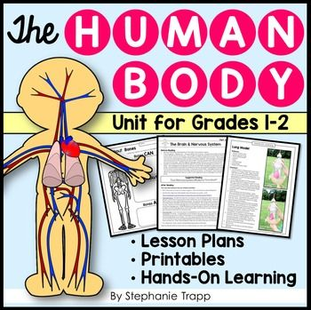 Human Body Unit for First and Second Grade