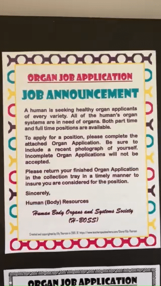 Organ Job Application Assignment for Biology and Human Anatomy in English and Spanish