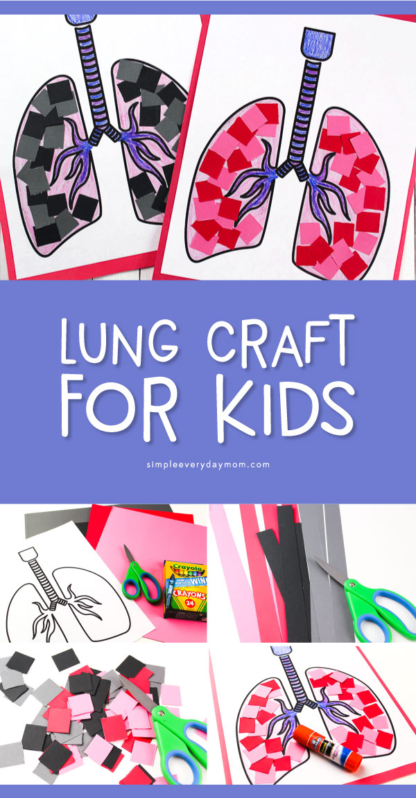 Simple Lung Craft For Preschoolers To Learn About The Human Body