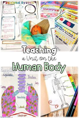 Teaching a Unit on the Human Body Systems