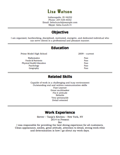 FREE High School Student Resume Examples Guide and Tips