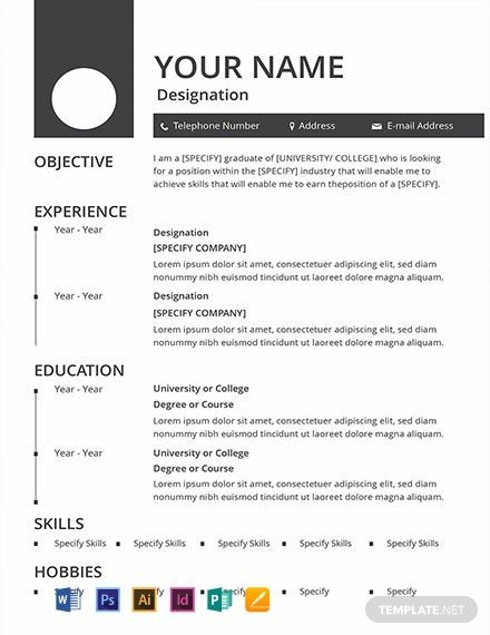 FREE Blank Resume CV Template Word DOC PSD InDesign Apple MAC Pages Illustrator