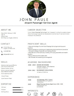 Best Airport Passenger Service Agent Resume Examples and Template Skills