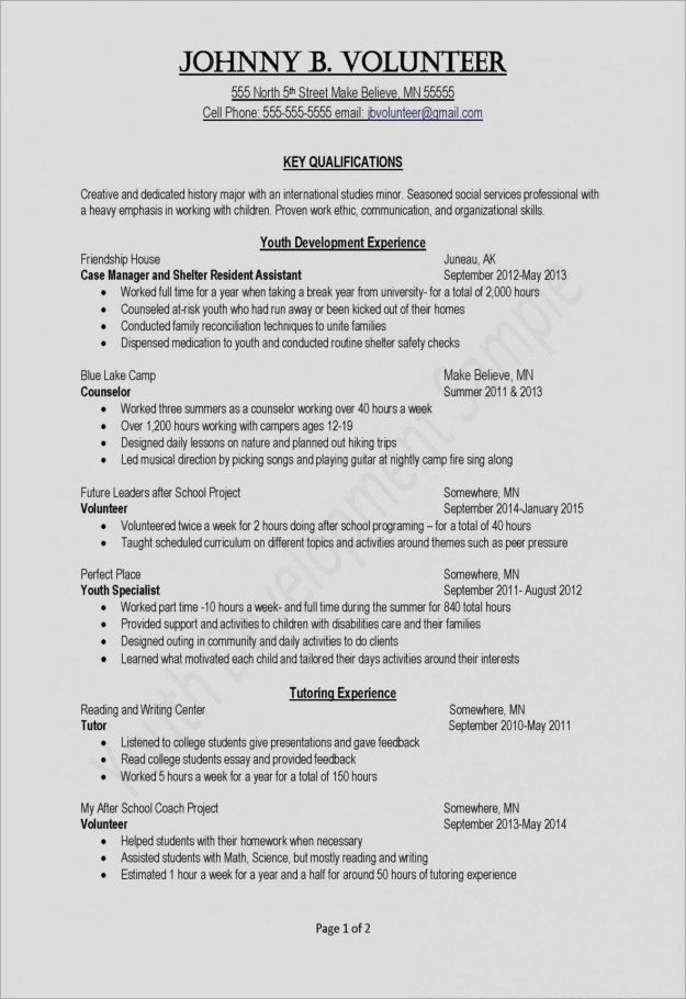 Professional Resume Templates Of Resume Template Zety Sample Resume for It Professional