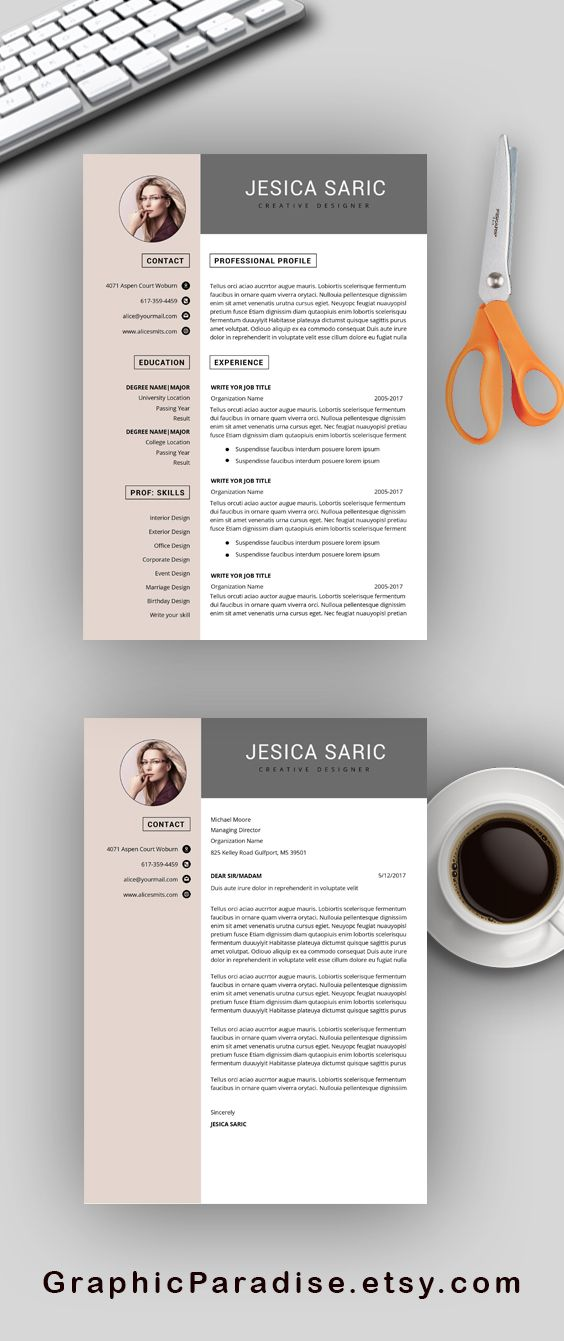 Professional cv template Resume templates for Microsoft word
